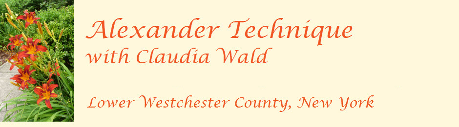Alexander Technique in Bronxville & Yonkers